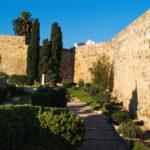 Dilluns tornaran a obrir l'esplanada de l'Amfiteatre, el Fòrum de la Colònia i el Passeig Arqueològic