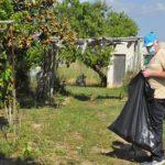 El 8 de juny es reobre l'accés als horts ecològics per a persones jubilades de Cal Dània