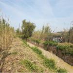 L'ACA destina més de 315.300 euros per adequar les lleres d'una dotzena de cursos fluvials de les comarques de Tarragona