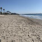 El Port acaba les obres de regeneració de la platja de La Pineda