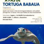 'A pas de tortuga babaua', l'exposició que es podrà visitar a Cal Bofill fins al 31 d'agost