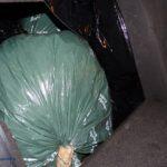 Detingut un home a Cambrils que transportava al cotxe 20 kg de marihuana