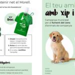 El Morell inicia una campanya per fomentar el cens dels animals de companyia amb el lema 'El teu amic, amb xip i censat'