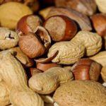 Una investigació de la URV demostra que menjar fruits secs provoca canvis en la funció de l'ADN de l'esperma