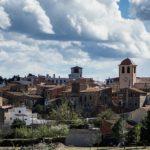 Riudecanyes, un exemple pioner en la recollida efectiva de la brossa, i el Priorat, la millor comarca