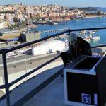 El Port vol recuperar el falcó pelegrí com a espècie nidificant al recinte portuari