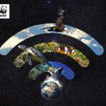 Torredembarra se suma, un any més, a l'Hora del Planeta