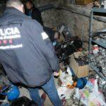 Els Mossos detenen un home a Riudoms per quatre furts, dos robatoris amb força a domicili i tres a interior de vehicle