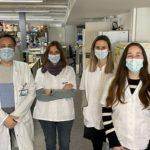 Un equip tarragoní descobreix un nou mecanisme pel qual l'obesitat pot afavorir el desenvolupament de tumors
