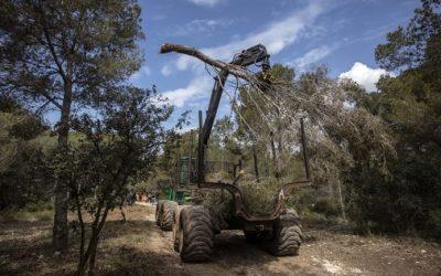 L'Ajuntament de Tarragona invertirà 500.000 euros en actuacions per a la prevenció d'incendis forestals a l'Anella Verda