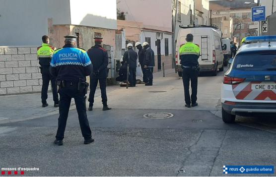 300 plantes de marihuana intervingudes en un dispositiu policial contra les connexions il·legals a la xarxa a Reus