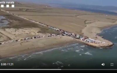 Vídeo: Desenes d'autocaravanes, furgonetes i cotxes mal estacionats al Delta de l'Ebre