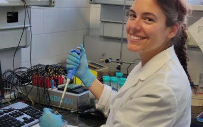 Desenvolupen un nou mètode d'etiquetat de bases d'ADN per a seqüenciació