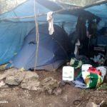 Ingressen a presó dos homes per cultivar 5.000 plantes de marihuana en una zona boscosa al Baix Camp