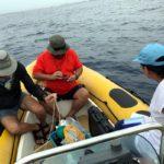 Detecten una alta concentració de microplàstics a la costa de Tarragona