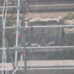 JxCat a Tarragona exigeix responsabilitats pel nyap de la Torre de Minerva