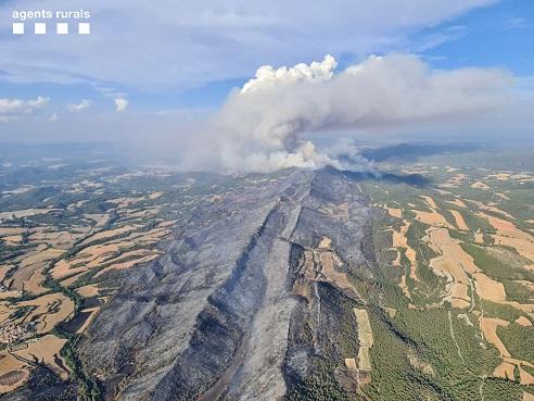 La Cambra de Reus reclama al Govern prioritzar el Pla de Prevenció d'Incendis