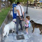 Tarragona estrena una font pública amb aigua freda per fer front a l'estiu