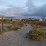 AGENDA: 'Sender Blau', l' exposició que es podrà visitar l'agost a Cal Bofill torrenc