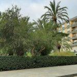 Reus licita el contracte de reparació de l'enllumenat públic, amb una inversió de 200.000 euros
