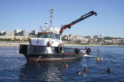 Biòtops per regenerar el fons marí i enfortir aliances de cara als fons Next Generation