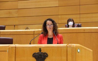 El Senat insta el govern espanyol a aturar la MAT entre Terol i Begues
