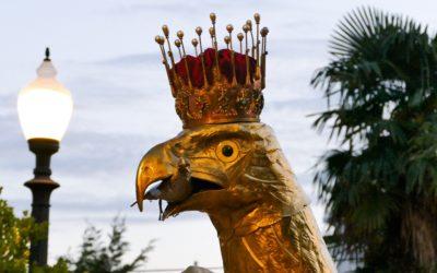 L'Àliga de Tarragona presenta el seu nou colom en el 35è aniversari de la seva recuperació