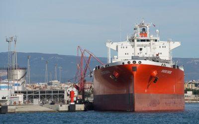 Tarragona, primer port mediterrani espanyol en poder importar subproductes d'origen animal per a produir biocombustibles
